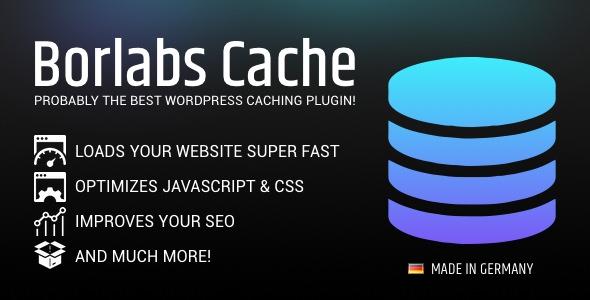 افزاش سرعت وردپرس با افزونه کش Borlabs Cache نسخه 1.5.1