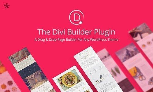 افزونه صفحه ساز وردپرس Divi Builder v2.0.22